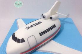 torta avion medellin dulcepastel