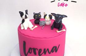 torta perros y gatos medellin dulcepastel